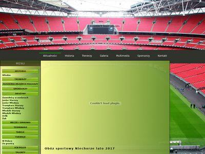 Szkółka piłkarska - Orlyrzeszow.com.pl
