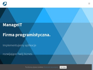 ManageIT - outsourcing programistów