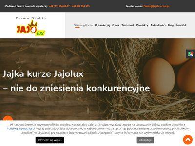 JAJOLUX świerze jaja